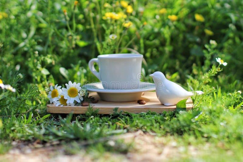 咖啡概念在自然生活中 免版税库存照片