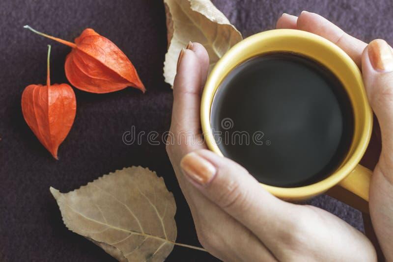 咖啡每杯子 免版税库存图片