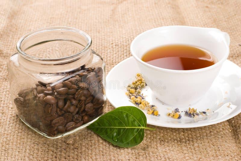 咖啡玻璃绿色瓶子叶子茶 免版税库存图片