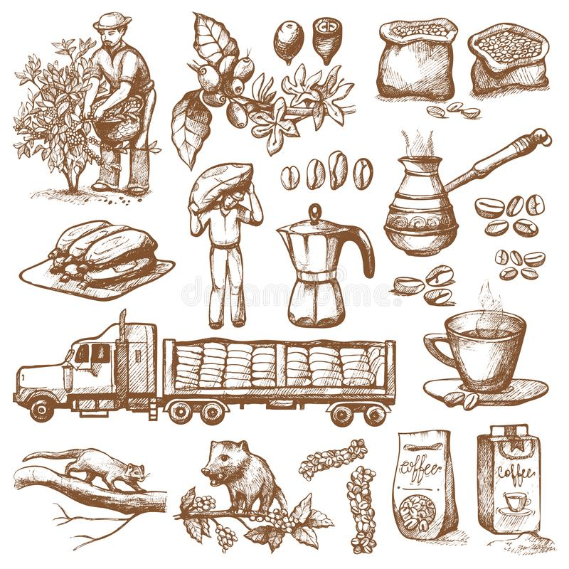 咖啡生产传染媒介种植园农夫采摘在树和葡萄酒图画的coffeine豆喝减速火箭的咖啡馆 库存例证