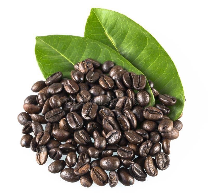 咖啡粒和叶子 免版税库存图片