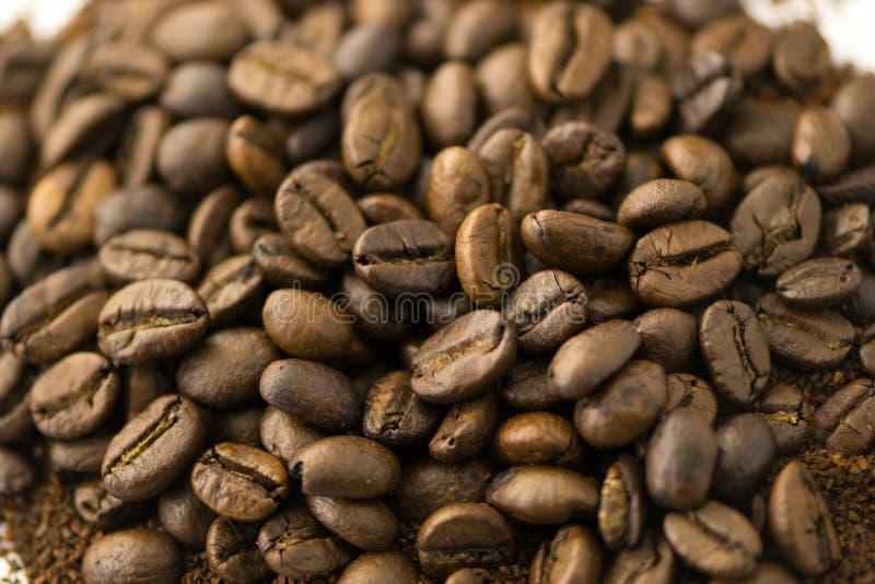 咖啡粒特写镜头 免版税库存照片