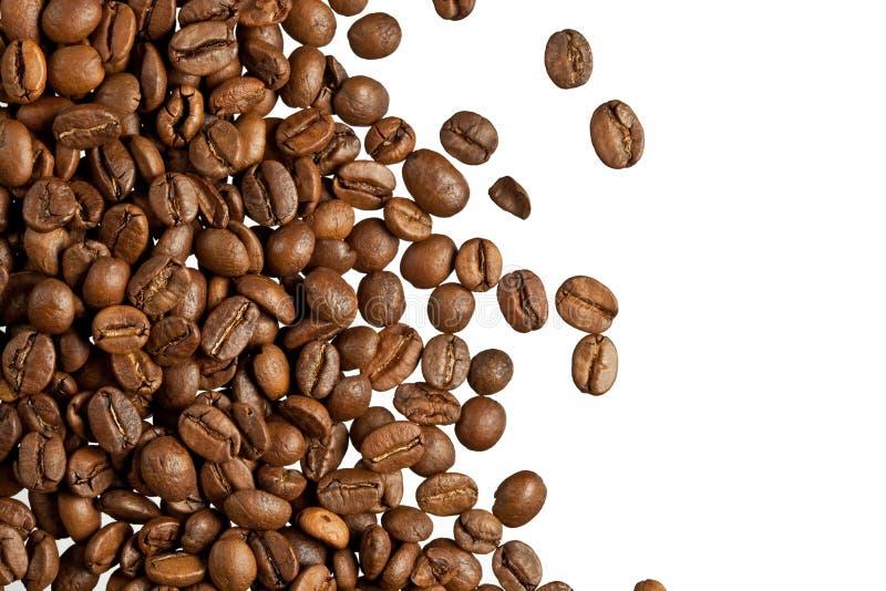 咖啡粒 免版税库存照片