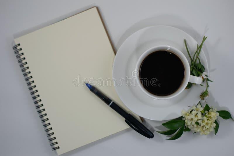 咖啡花白色背景 库存照片