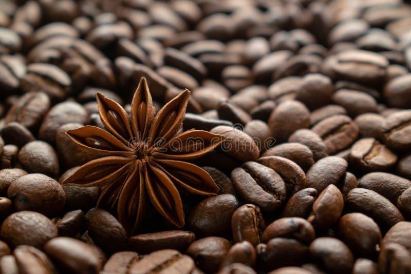 咖啡豆和八角 免版税库存照片