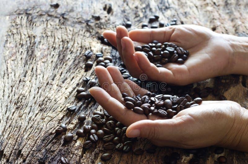 咖啡豆在木背景的手上 免版税库存照片