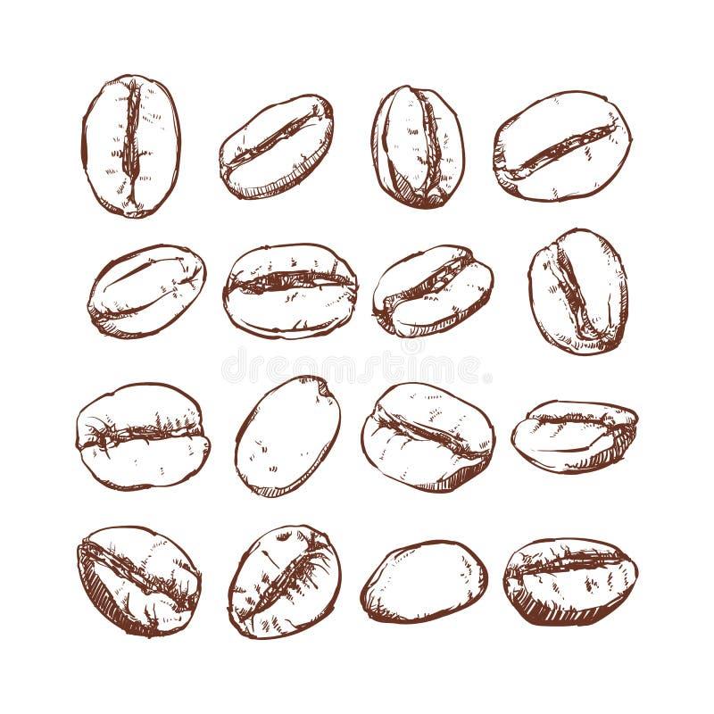 咖啡豆隔绝了手拉的传染媒介,咖啡豆剪影  向量例证