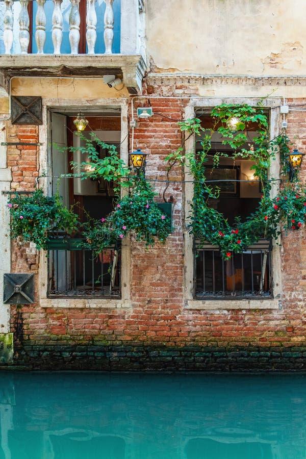 咖啡馆窗口的美丽的景色,装饰用垂直增长的植物在运河的威尼斯 免版税库存照片