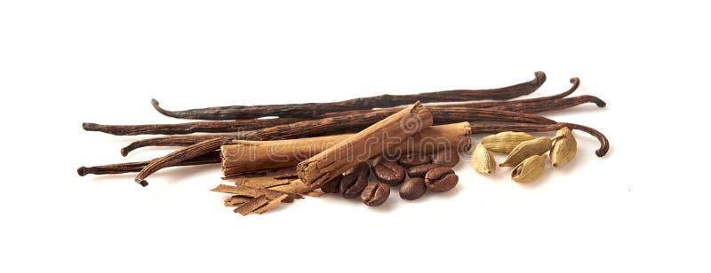 咖啡,香草,桂香,在白色背景的豆蔻果实 库存图片