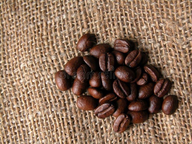Download 咖啡 库存图片. 图片 包括有 咖啡, 背包, 食物, 饮料, 投反对票, 咖啡馆, 种子, 可耕的 - 59145