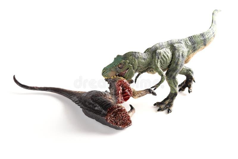 咬住在白色的顶视图暴龙恐龙身体 免版税图库摄影