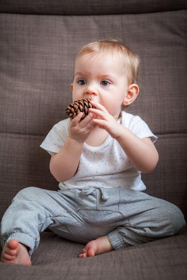 咬杉木锥体的女婴 免版税库存照片