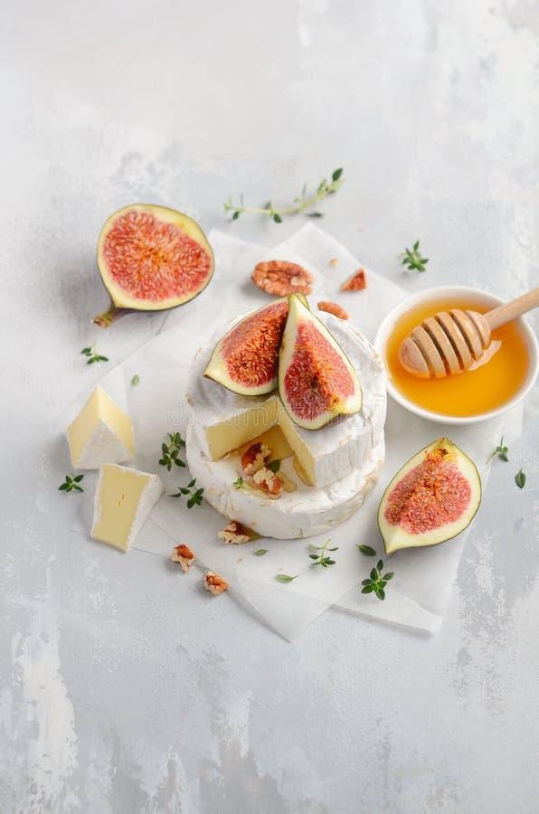 咸味干乳酪或软制乳酪乳酪用无花果、麝香草、蜂蜜和坚果 免版税库存照片