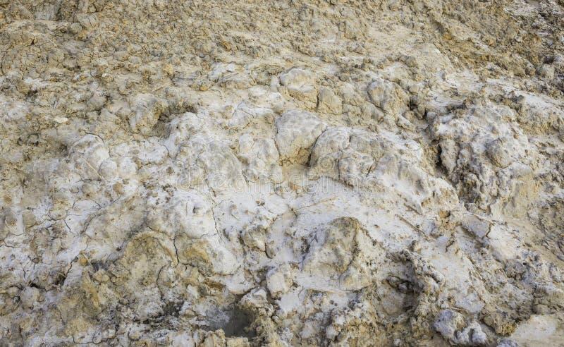 咸土壤 库存图片