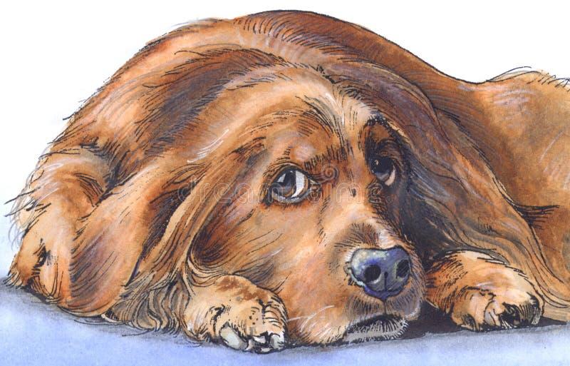 哀伤的狗 向量例证
