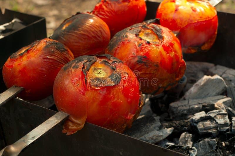 品尝蕃茄 库存图片