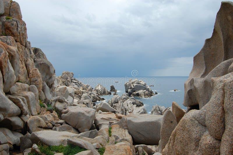 品柱介壳,撒丁岛 库存图片