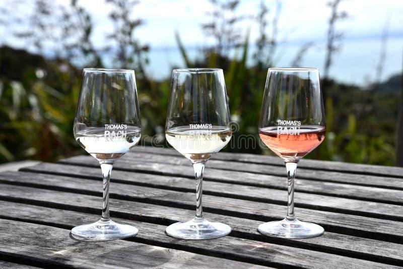 品酒在新西兰 免版税库存照片
