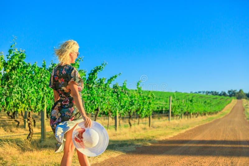 品酒西澳州 免版税库存图片