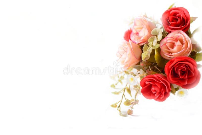 织品颜色在白色背景的玫瑰花 库存照片