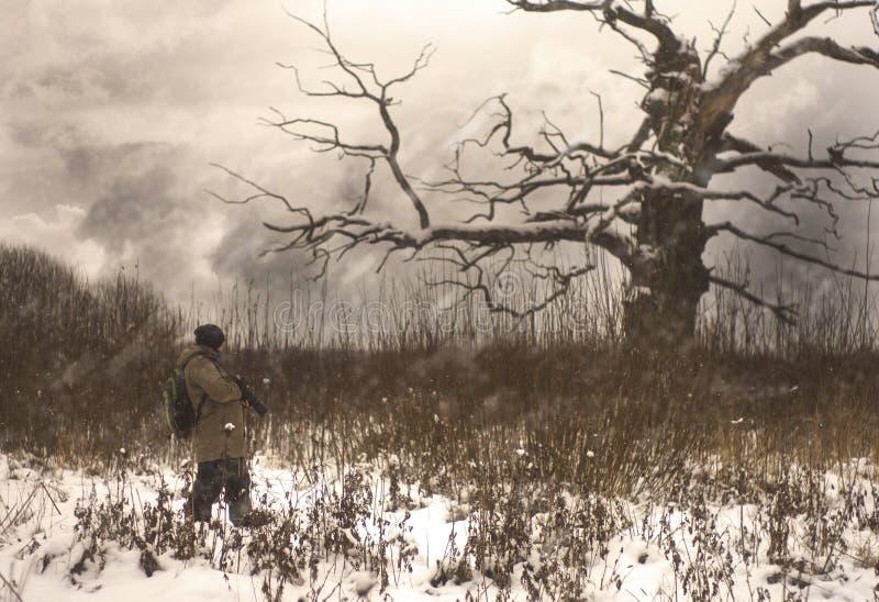 哇,树-摄影师和树