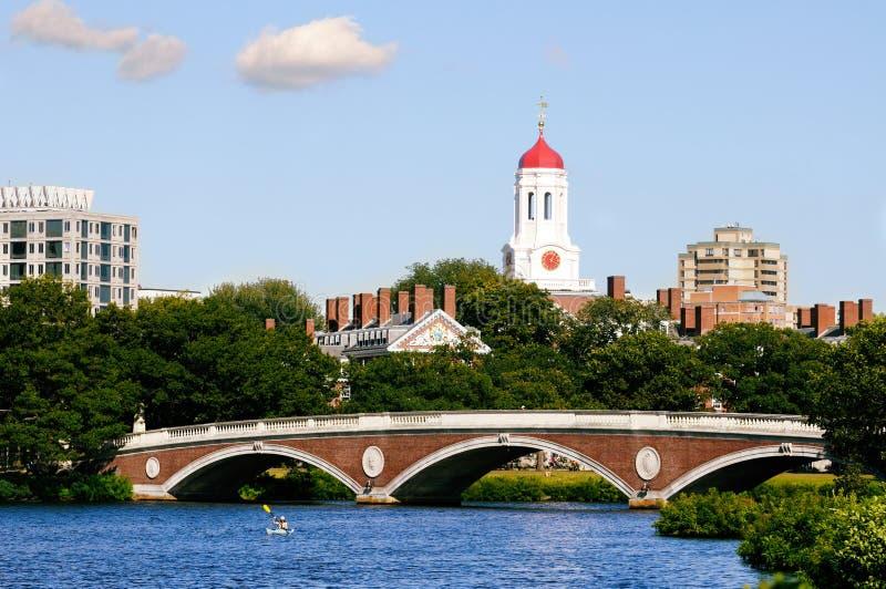 哈佛大学 库存图片