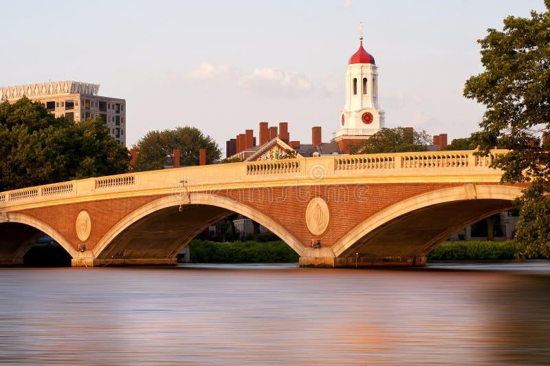 哈佛 免版税图库摄影