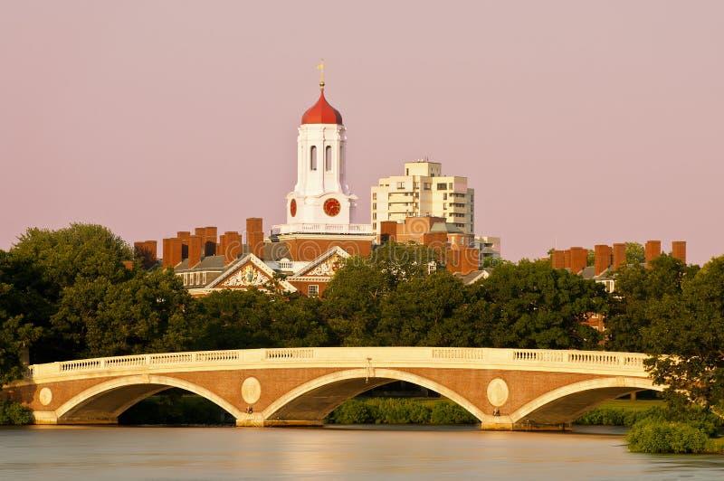 哈佛 免版税库存图片