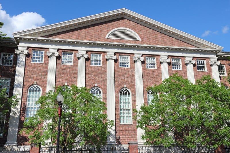 哈佛 免版税库存照片