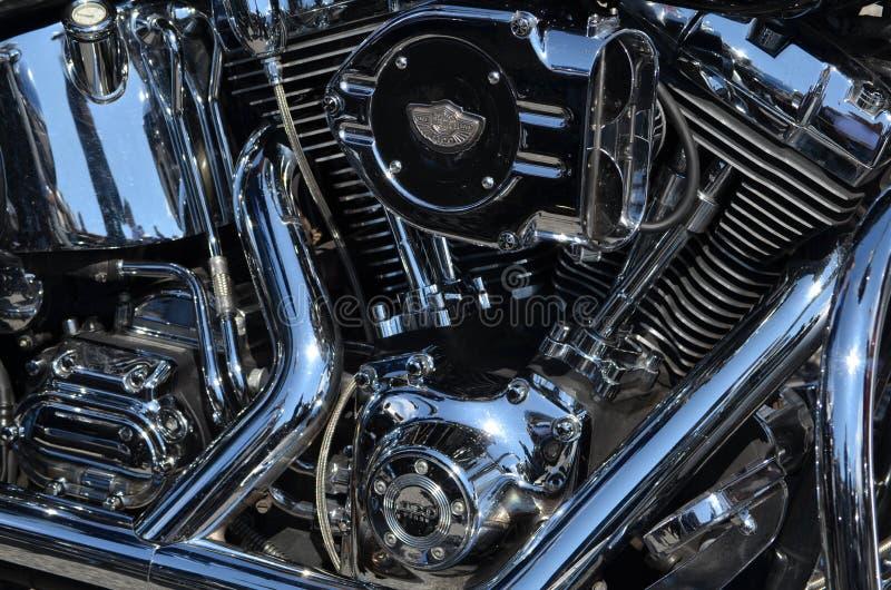 哈利戴维森定制的摩托车 免版税库存照片