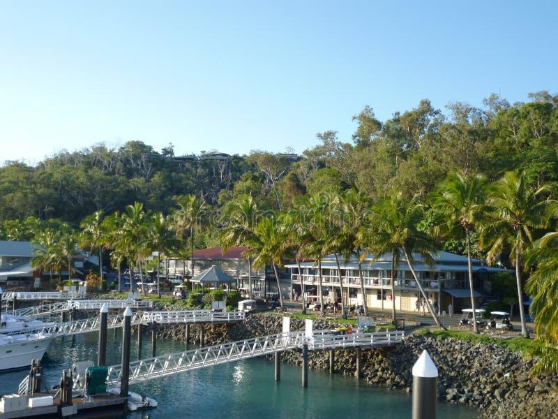 哈密尔顿岛小游艇船坞热带天堂澳大利亚 免版税库存照片