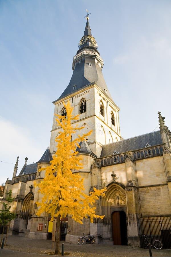哈瑟尔特大教堂,比利时 免版税库存照片