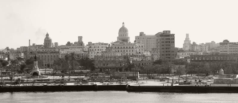 哈瓦那被定调子的乌贼属地平线 免版税库存照片