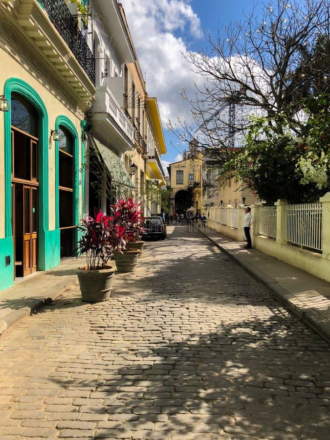 哈瓦那,古巴街道的明亮的房子  库存图片
