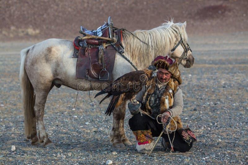 哈萨克人与马的老鹰猎人Berkutchi,当寻找对与的野兔在他的胳膊时的鹫 库存照片