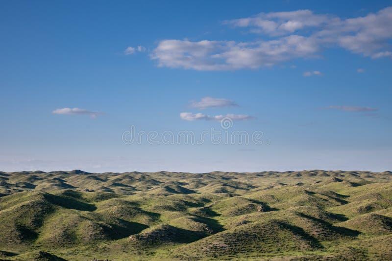 哈萨克斯坦山麓小丘  库存照片