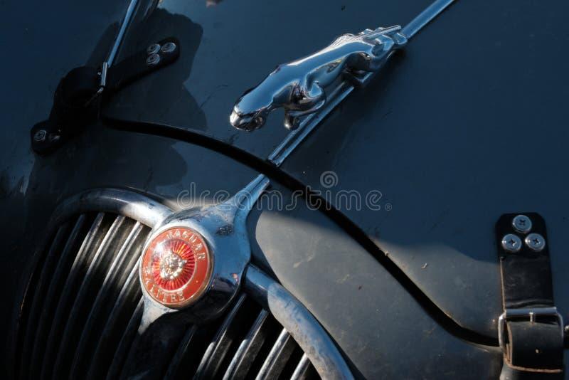 哈萨克斯坦,库斯塔奈,19-06-19,召集北京到巴黎 葡萄酒汽车捷豹汽车的象征 a敞篷的零件的特写镜头  免版税图库摄影