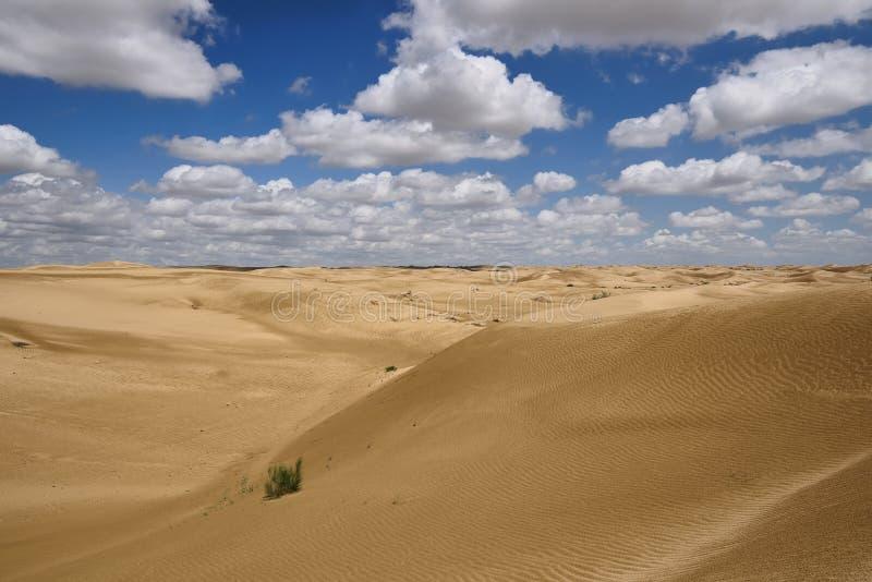 哈萨克斯坦, 沙漠风景,曼格斯套州 库存图片