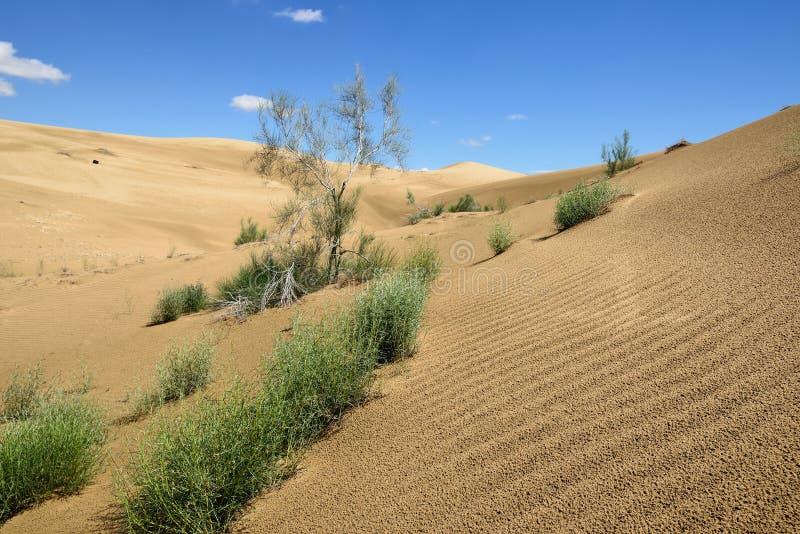 哈萨克斯坦, 沙漠风景,曼格斯套州 图库摄影