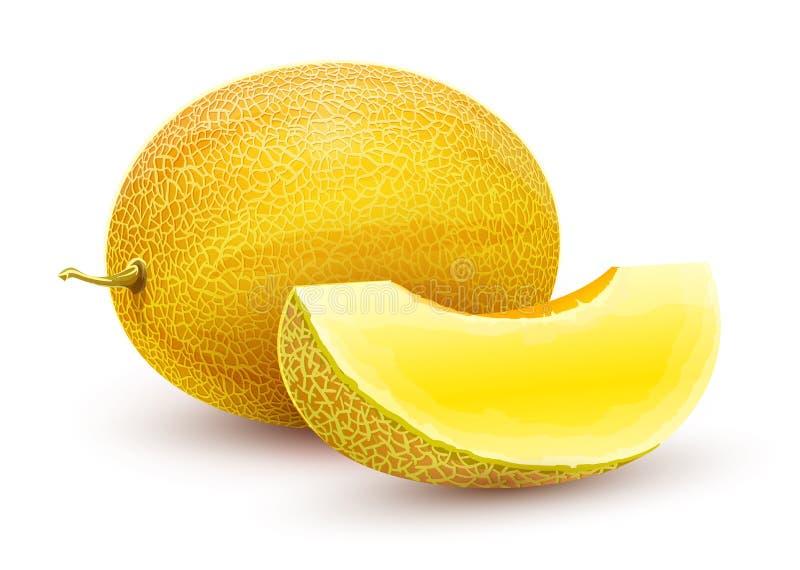 哈蜜瓜 整个新鲜的成熟甜果子 皇族释放例证