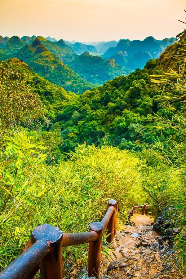 哈隆海湾从猫Ba海岛, Ngu潜逃峰顶,越南的山观点 库存照片