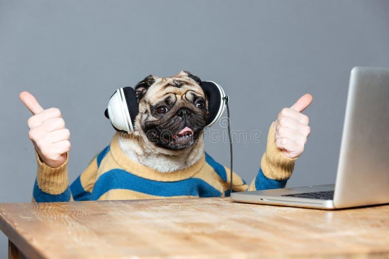 哈巴狗狗用在显示赞许的耳机的人手 免版税库存图片