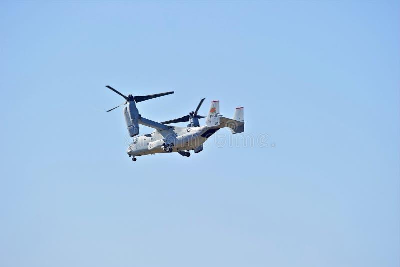 响铃波音MV-22白鹭的羽毛旋转翼倾斜的航空器 库存照片