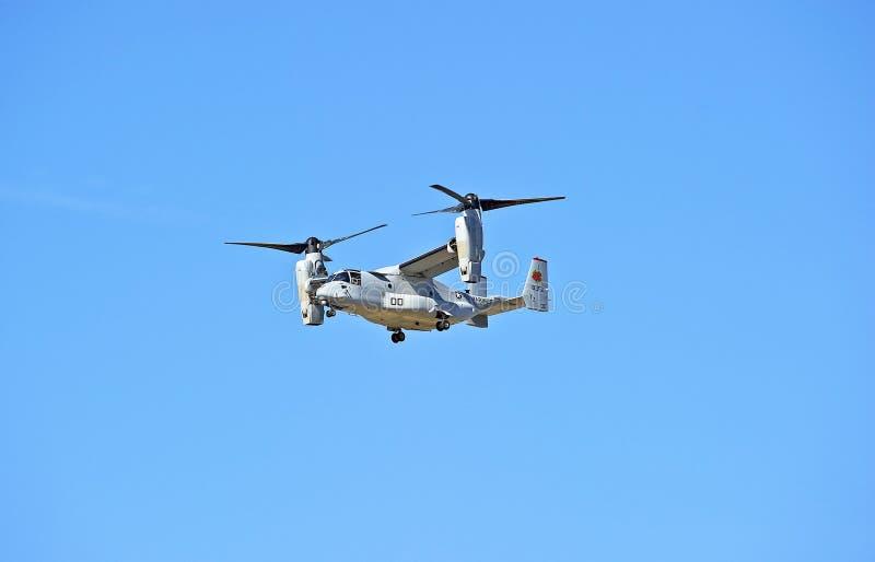 响铃波音MV-22白鹭的羽毛旋转翼倾斜的航空器 库存图片