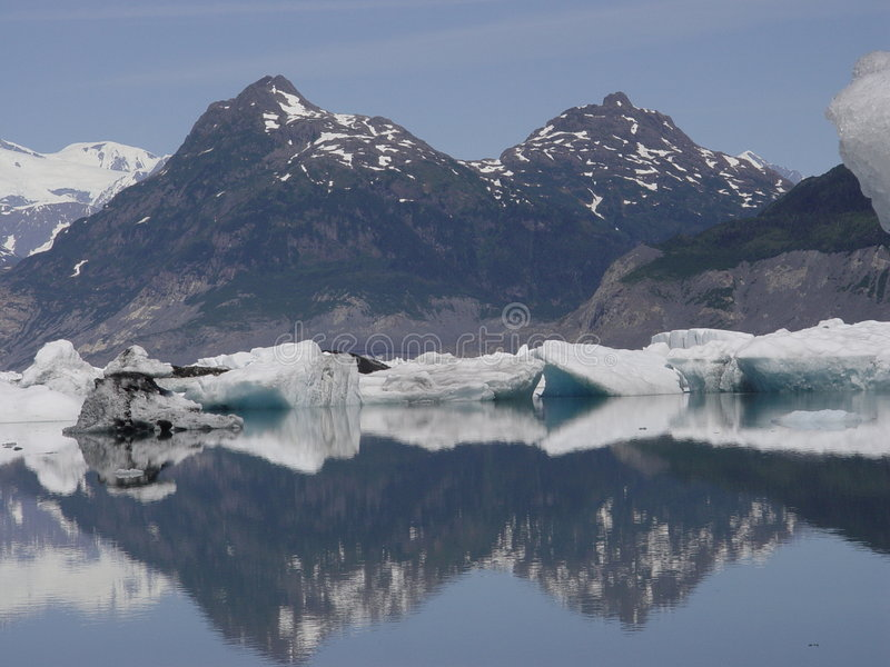 哥伦比亚冰原冰 库存照片