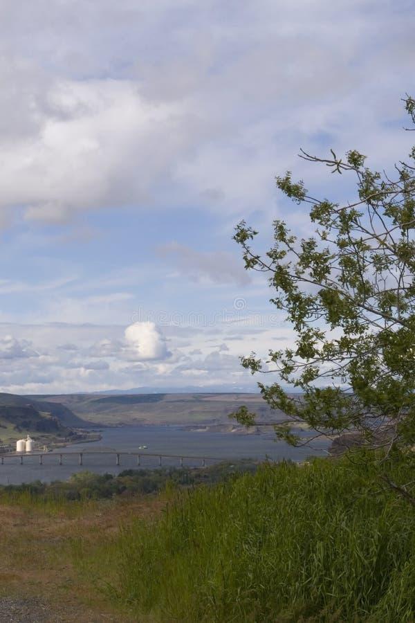 哥伦比亚峡谷河 库存图片