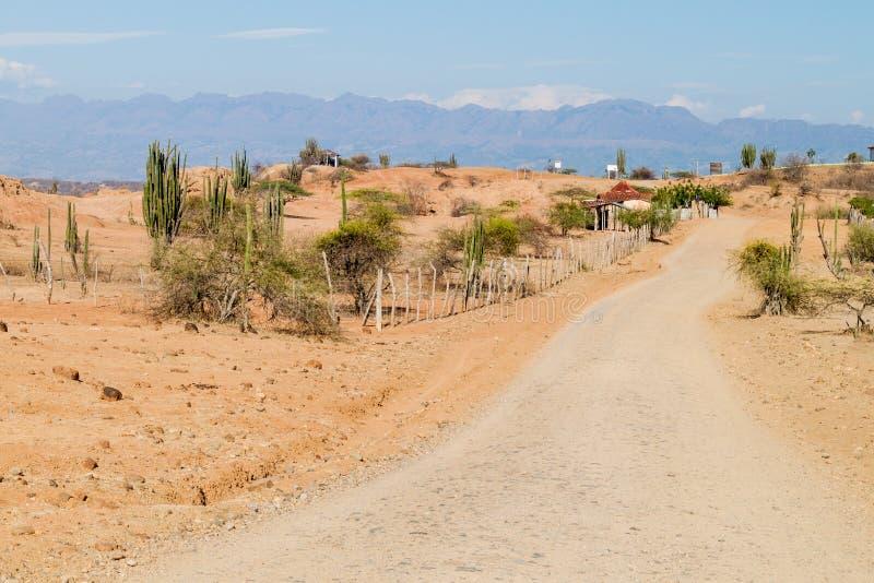 哥伦比亚沙漠tatacoa 免版税库存照片