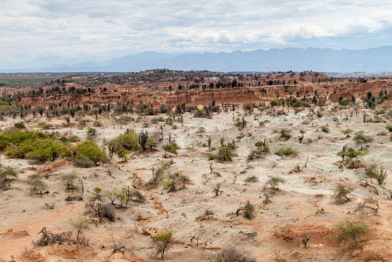 哥伦比亚沙漠tatacoa 免版税库存图片