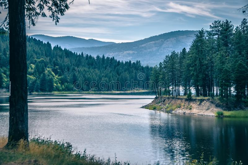 哥伦比亚河华盛顿州自然 免版税库存图片