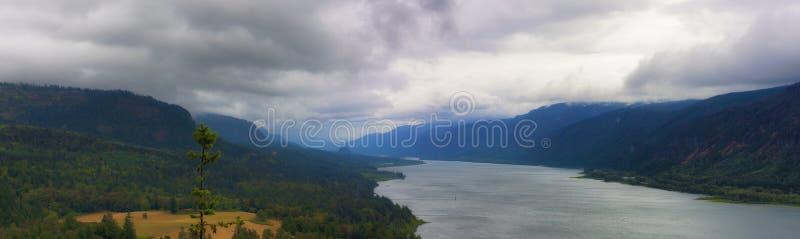 哥伦比亚河峡谷全景  库存照片